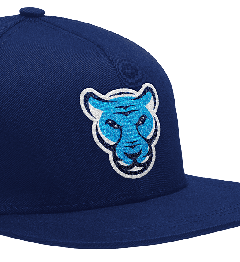 Rise Prep's brand mark with panther mascot on a sports cap